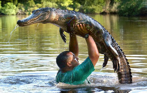Dirty Dancing Croc