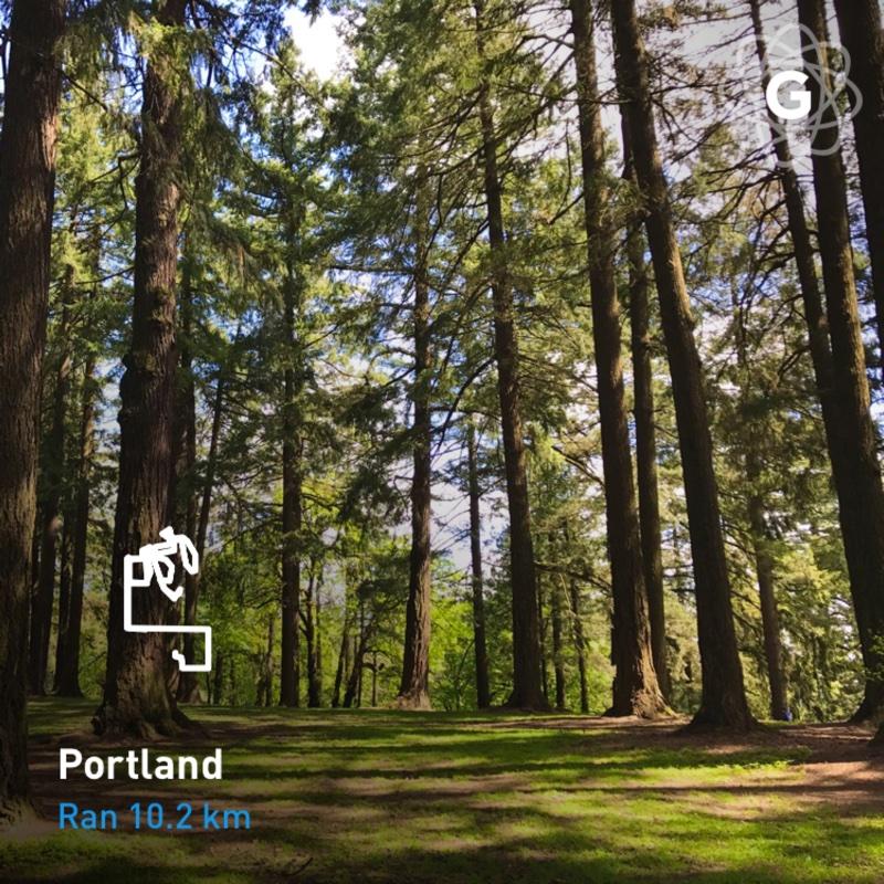 Portland 10k